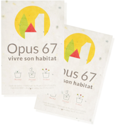 carte-de-visite-biodégradable.png